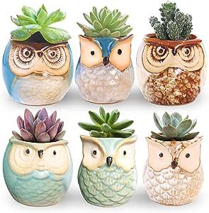 ROSE CREATE 6 Pcs 2.5 Inches Owl Pots, Little Ceramic Succulent Bonsai Pots with a Hole - Pack of 6