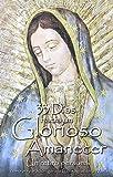 33 días hacia un glorioso amanecer / 33 Days to Morning Glory (Spanish Edition)