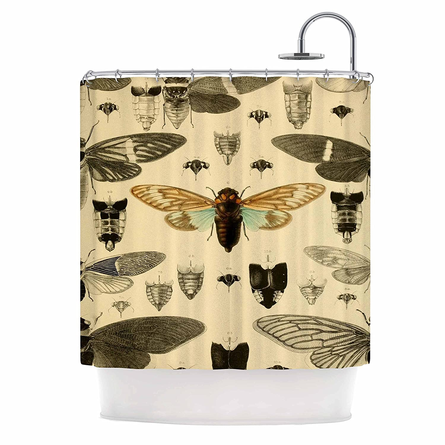Kess InHouse Suzanne Carter Vintage Cicada Bugs Pattern Shower Curtain 69 by 70-Inch