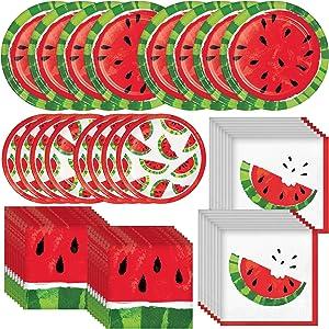 Creative Converting Juicy Watermelon Dinnerware Bundle | Plates, Napkins | Birthday Party Decoration, Fruit Theme Supplies, Summer Decorations