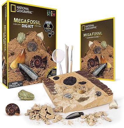 Sharks Tooth Mini Digging Kit Mining Excavation Dig Rock Set Archaeological xmas