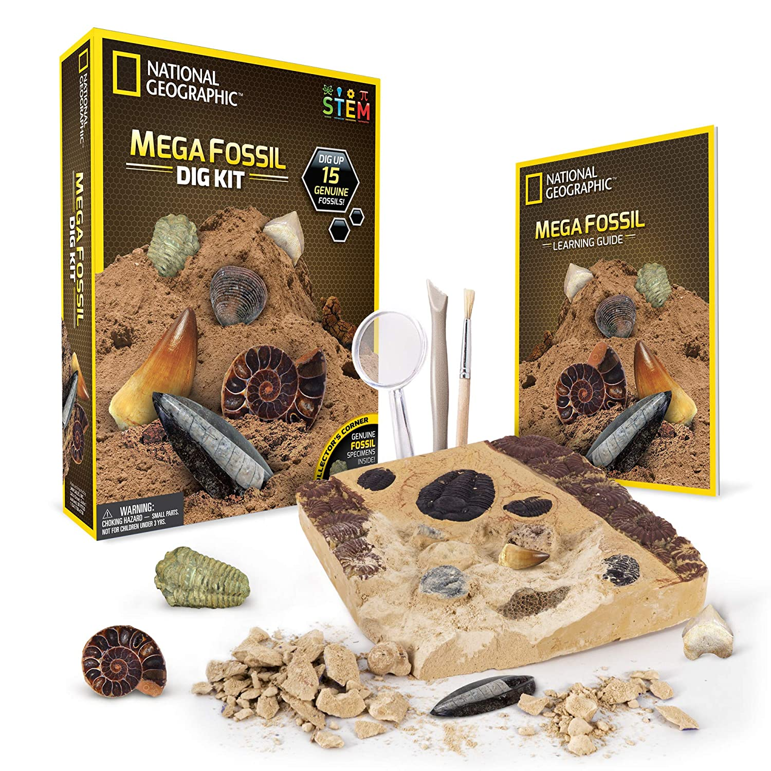 NATIONAL GEOGRAPHIC Mega Fossil Dig Kit – Excavate 15 real fossils  including Dinosaur Bones, Mosasaur & Shark Teeth - Great STEM Science gift  for