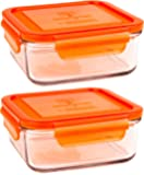 Wean Green Set of 4 Meal Cubes - Eco-Friendly BPA-Free Durable Glass Food Container - 28 Ounce Raspberry