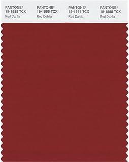 Amazon.com: Pantone Smart color Swatch tarjeta, 19-4010X ...