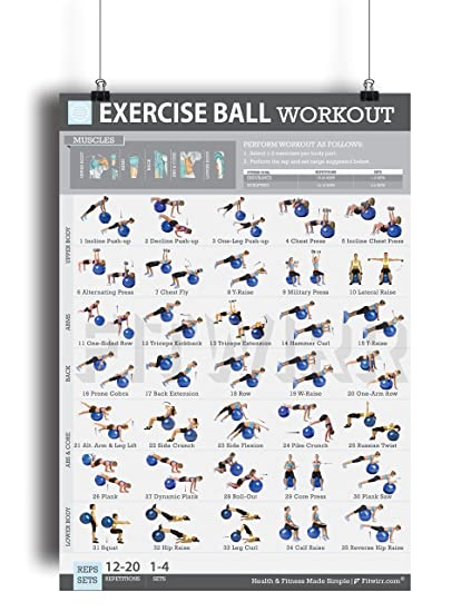 image relating to Printable Exercise Ball Workouts titled 19\