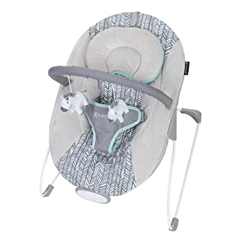 Pleasant Baby Trend Ez Bouncer Ziggy Interior Design Ideas Clesiryabchikinfo