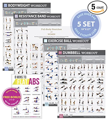Tone Tighten Home Gym Posters Set Of 5 Exercise Charts 19quotx27quot