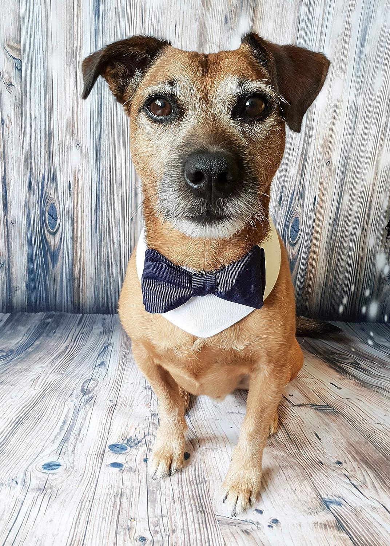 Dog wedding bandana - white and navy bow tie bandana