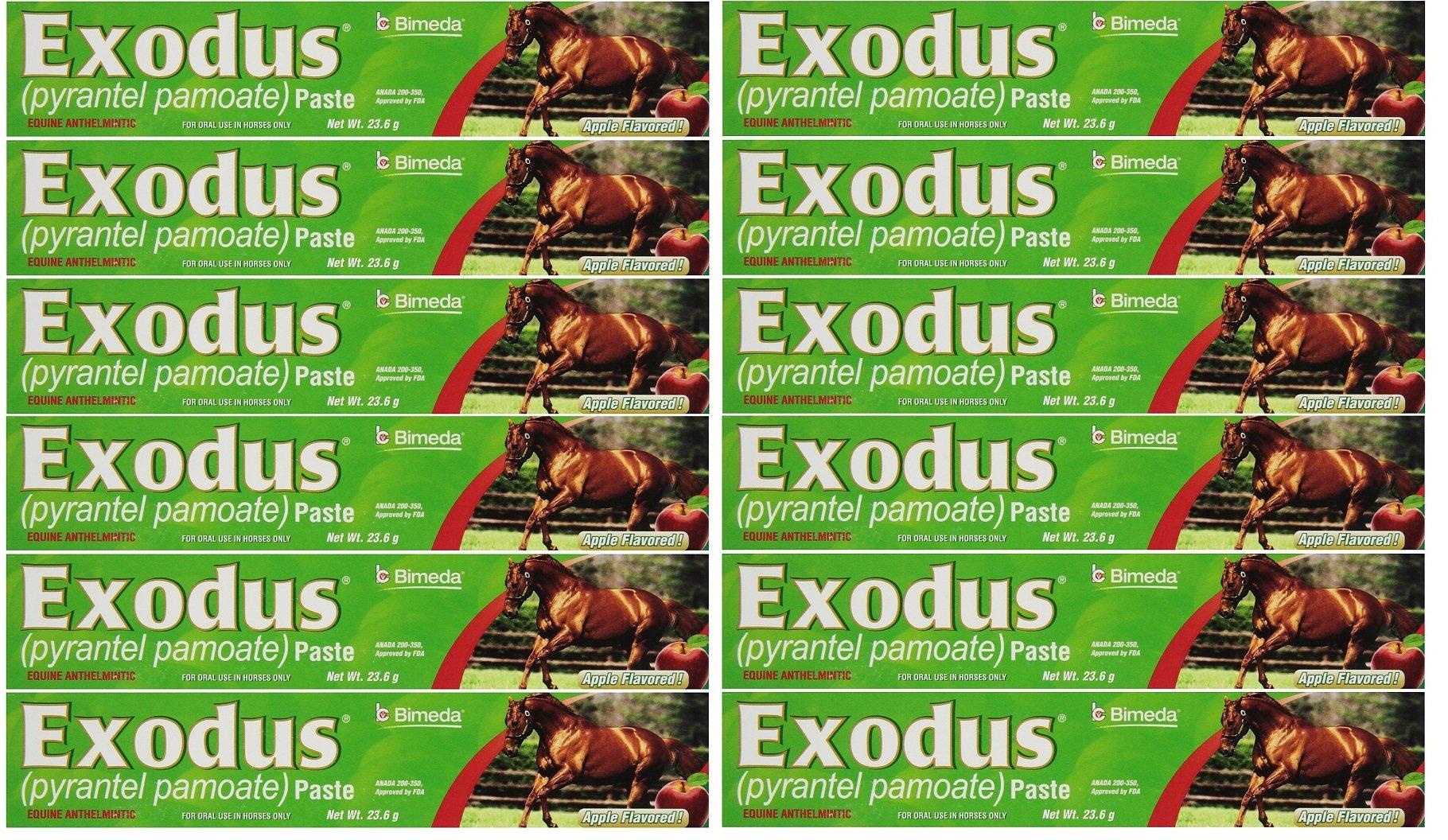 BIMEDA Pyrantel Paste Horse 23.6g wormer Equine Parasite Exodus (Pamoate Strongid) OTC 12 Pack by BIMEDA