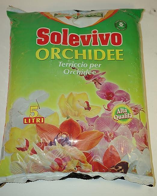 3 opinioni per solevivo terriccio per orchidee da 5 lt