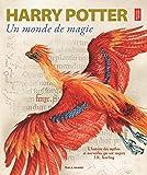 Harry Potter, un monde de magie