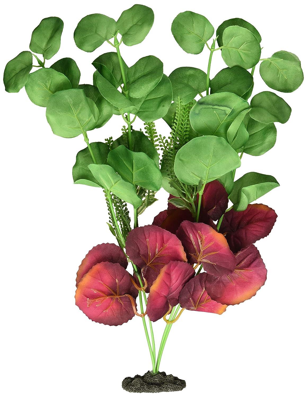 Marina Naturals Moneywort Aquarium Plant Indigo//Rosso