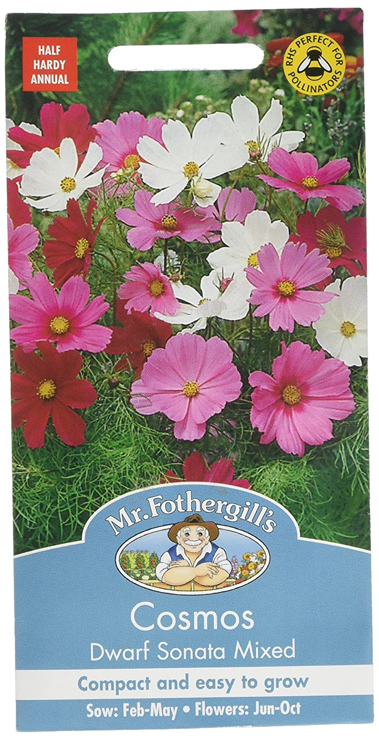Mr. Fothergill's 14957 Cosmos Dwarf Sonata Mixed Flower Seeds Mr Fothergill?s Seeds Ltd