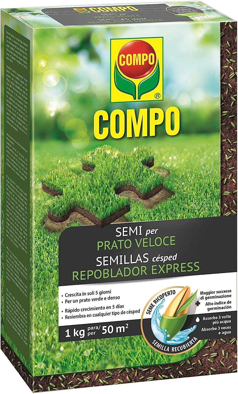 Compo Semillas de césped repoblador Express, para 50 m², 1 kg, 2357802011