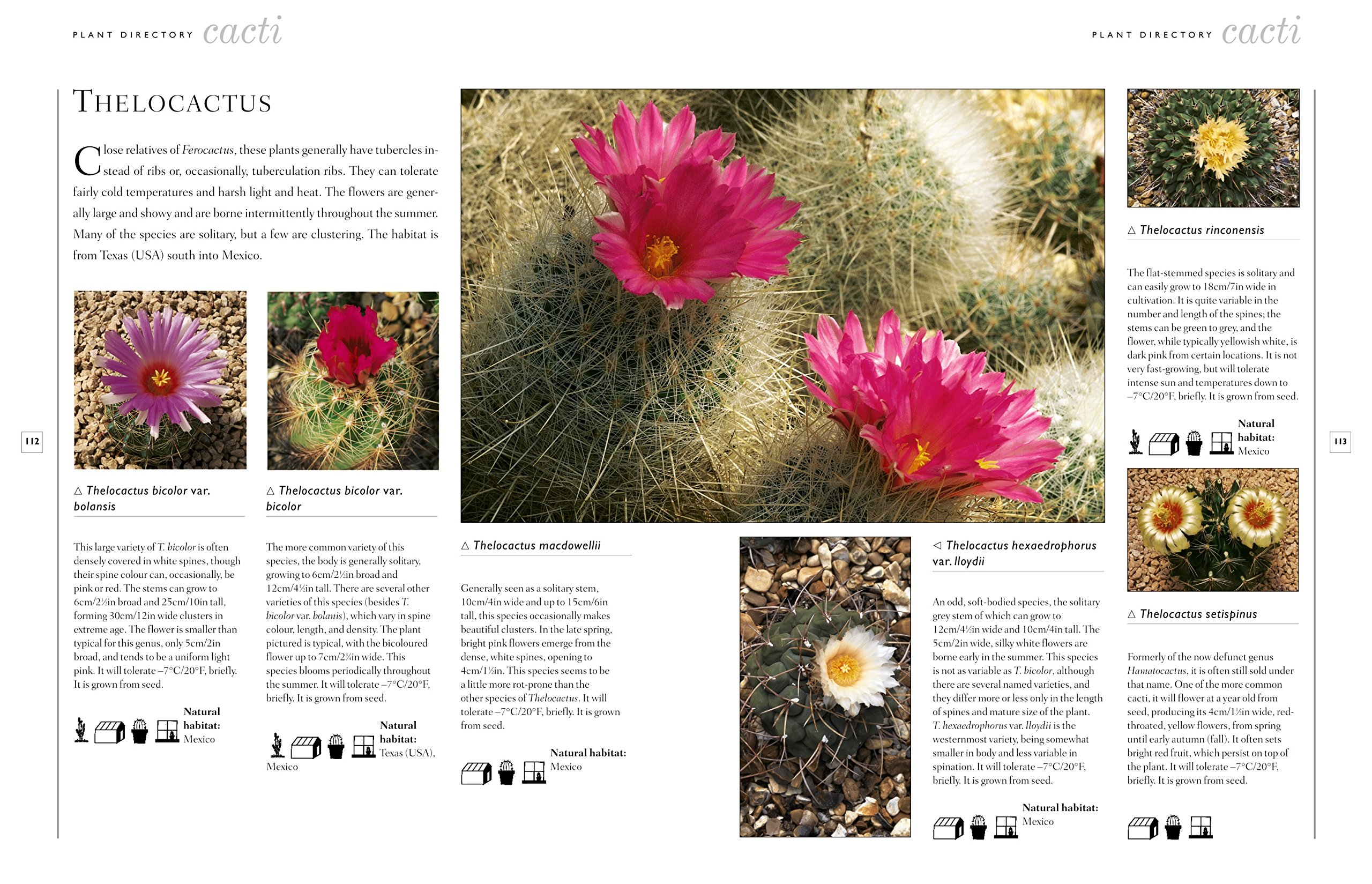 The Practical Illustrated Guide to Growing Cacti & Succulents: The Definitive Gardening Reference On Identification, Care And Cultivation, With A Directory Of 400 Varieties And 700 Photographs
