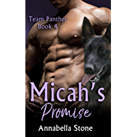 Micah's Promise (Delta Force - Team Panther Book 4) (English Edition)