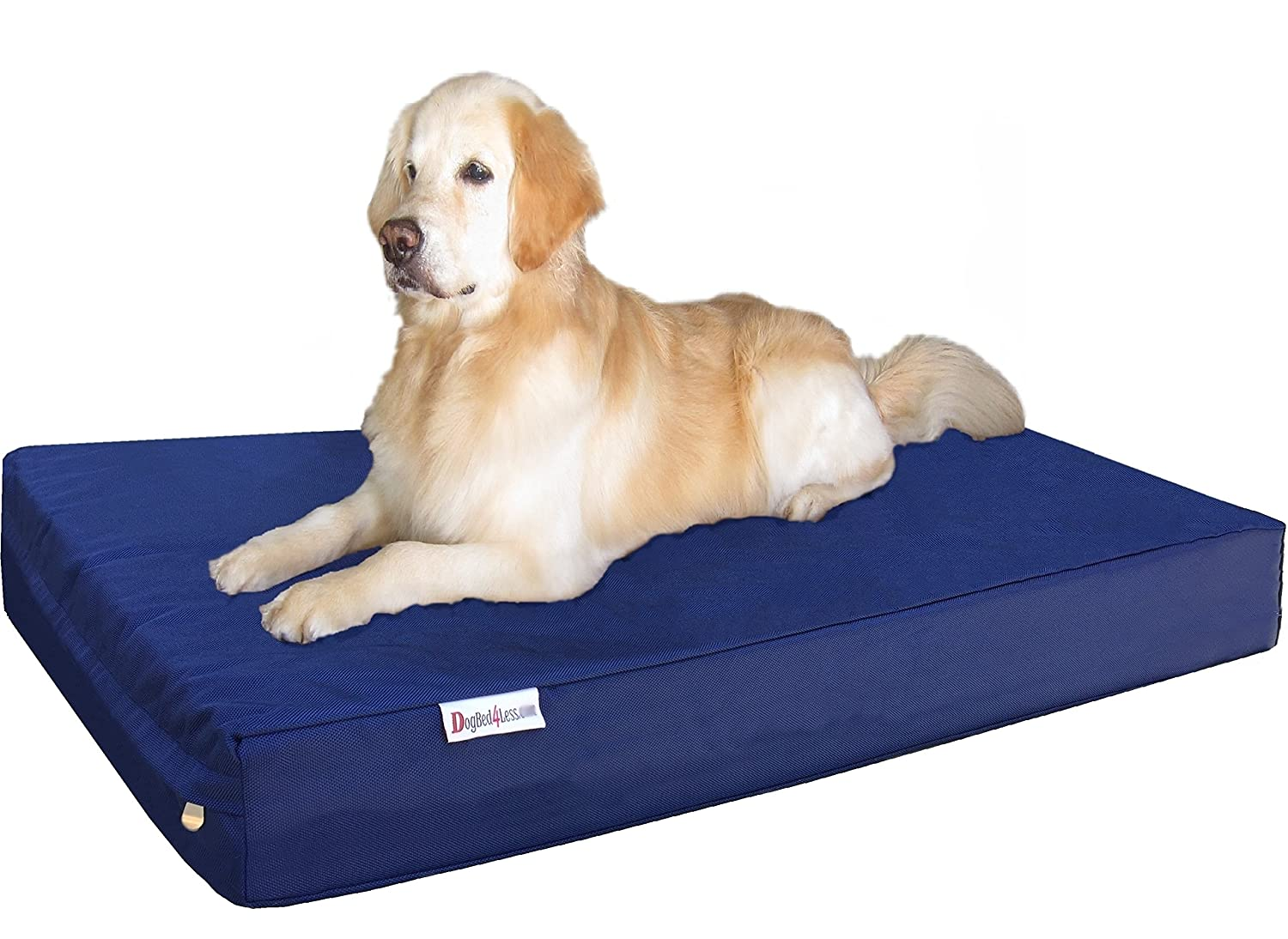 Dogbed4less Jumbo Extra Large Orthopedic Gel Infused Memory Foam Dog Bed with Washable External Zipper Cover and Waterproof Liner, 55X37X8 Inches