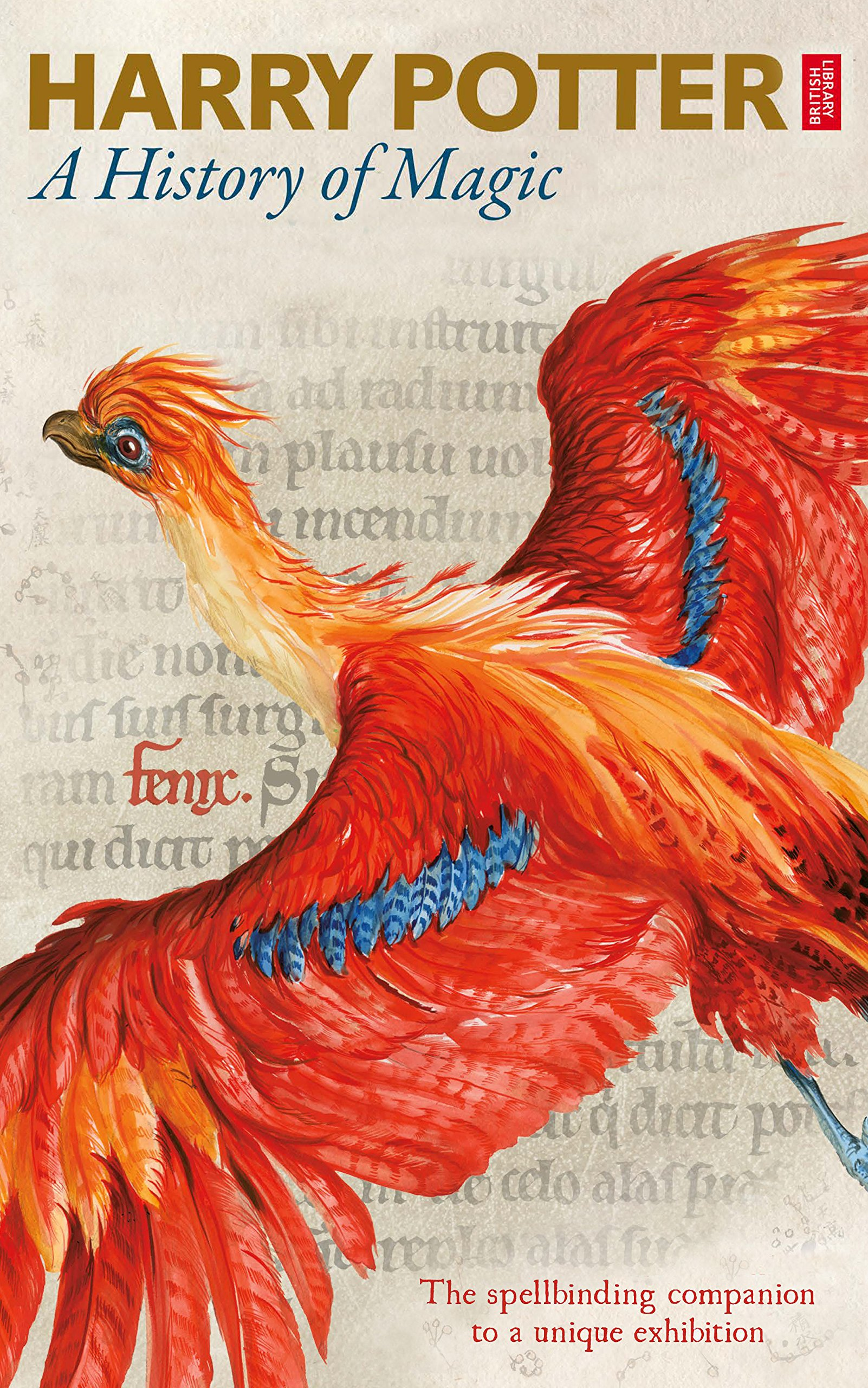 Harry Potter   A History Of Magic  The EBook Of The Exhibition  English Edition