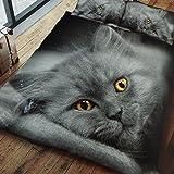 Gaveno Cavailia Premium colección 3d Cat Set con funda de edredón y funda de almohada poliéster,., multicolor, Doublé