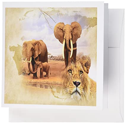 Africa Map Background.Amazon Com 3drose Out Of Africa Map Background And Elephant Herd