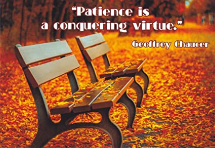 Amazon Quotes05 Patience Is A Conquering Virtue Geoffrey