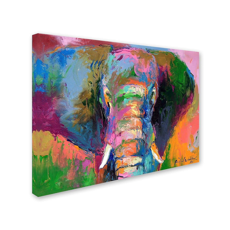 Elephant 2 by Richard Wallich, 18×24-Inch Canvas Wall Art