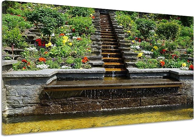 Jardín Agua Caso SLP35-TEH2-IPH5T – Arbustos Natural Lienzo Póster Impresión de cc3979, 160x120: Amazon.es: Hogar