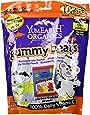 YumEarth Organic Halloween Gummy Bears, 7 Ounce