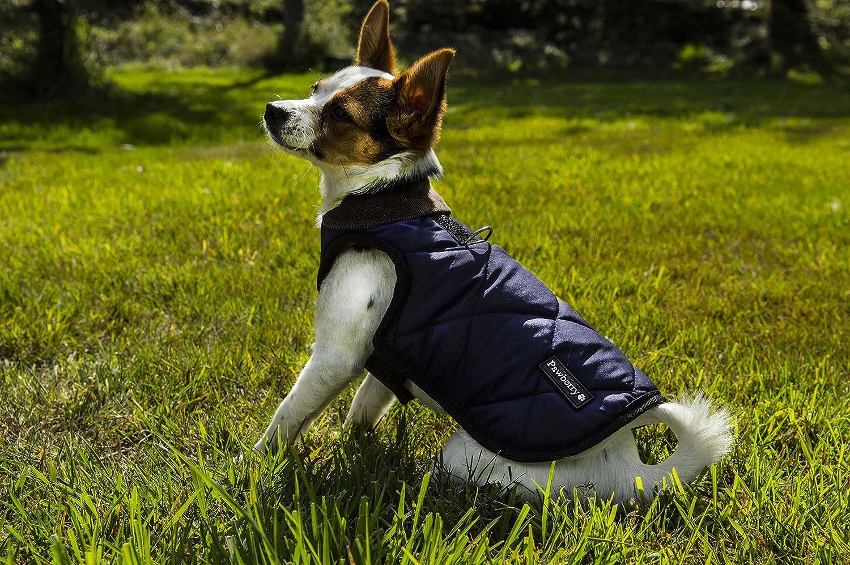pawberry Abrigo de perro con construido en Arnés: Amazon.es ...