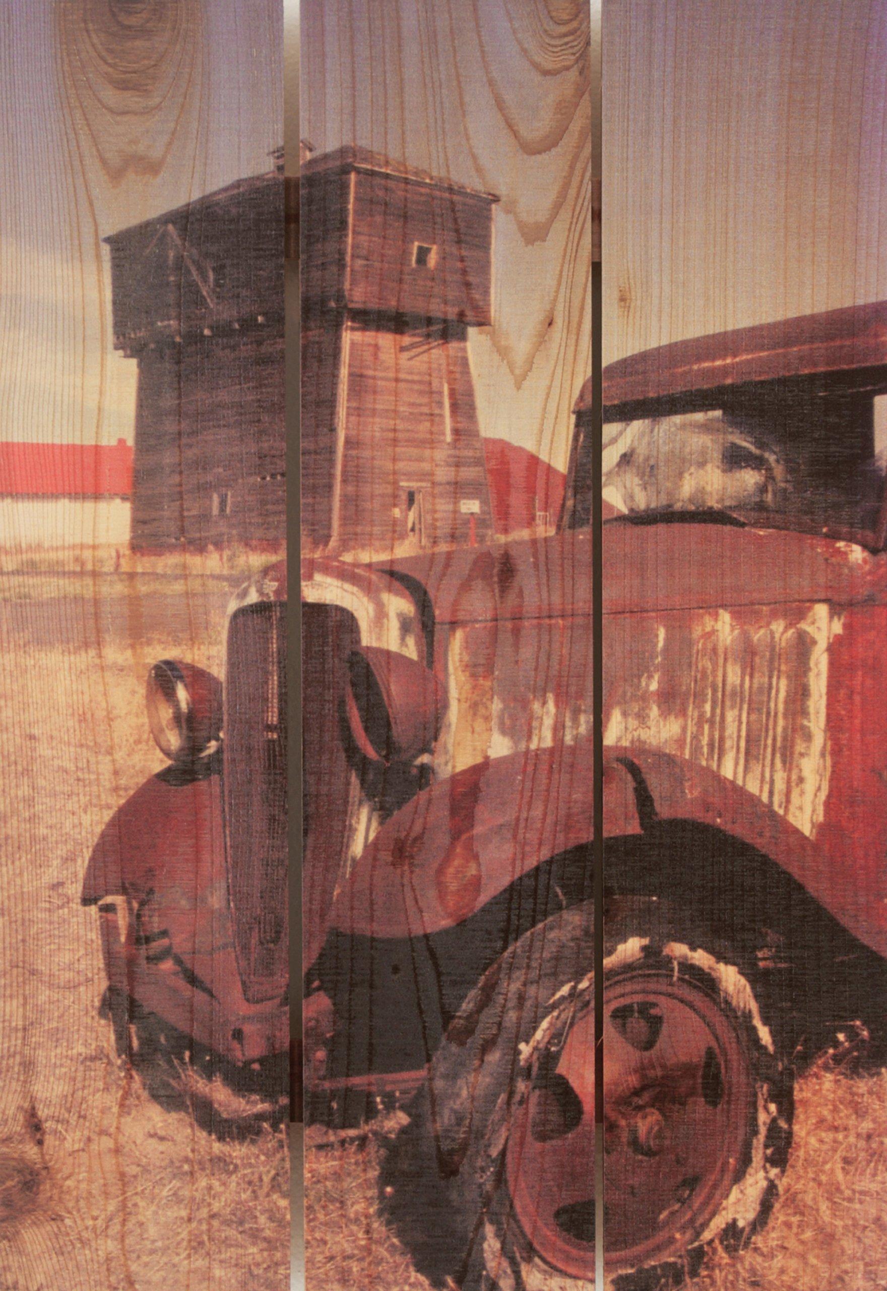 Gizaun Art Rust Bucket Inside/Outside Wall Art, Full Color on Cedar, 16-Inch by 24-Inch
