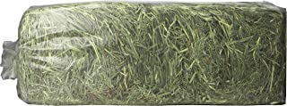 product image for Timothy Gold Hay, 5Lb, Blue