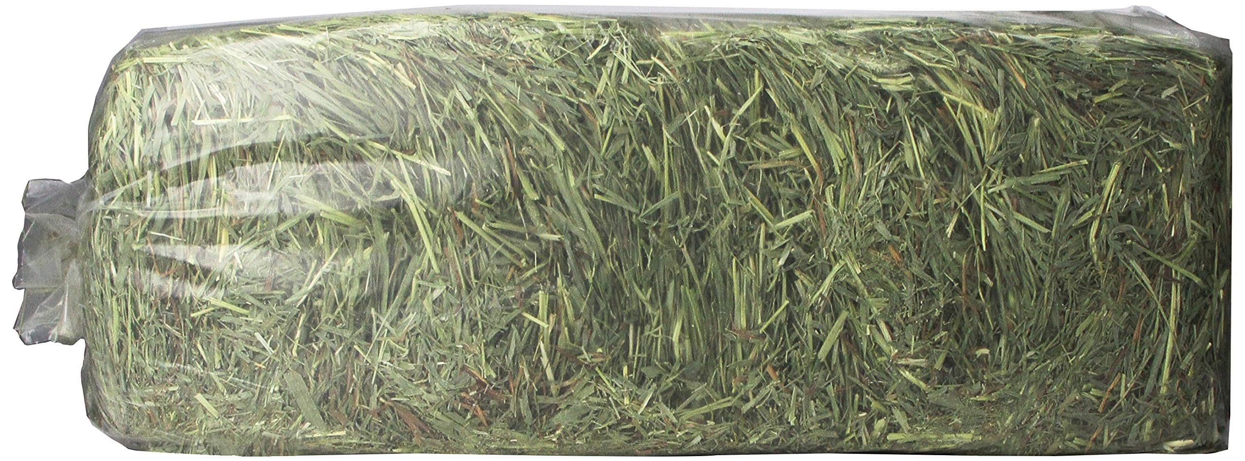 Timothy Gold Hay, 5Lb, Blue