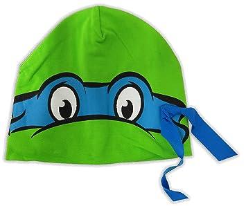 Amazon.com: TMNT teenage mutant ninja turtles Leonardo ...