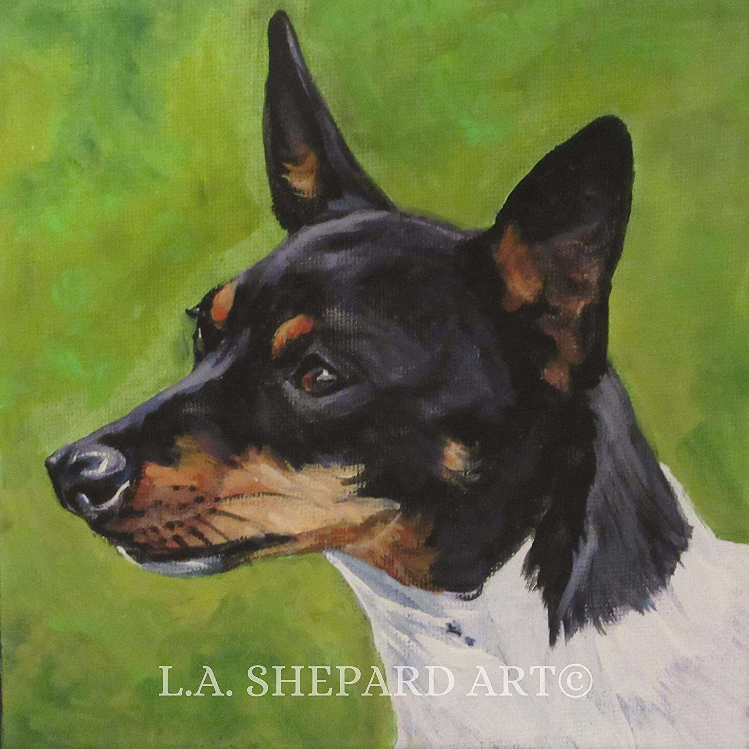 A Toy Fox Terrier Dog art portrait print of an LA Shepard painting 8x8