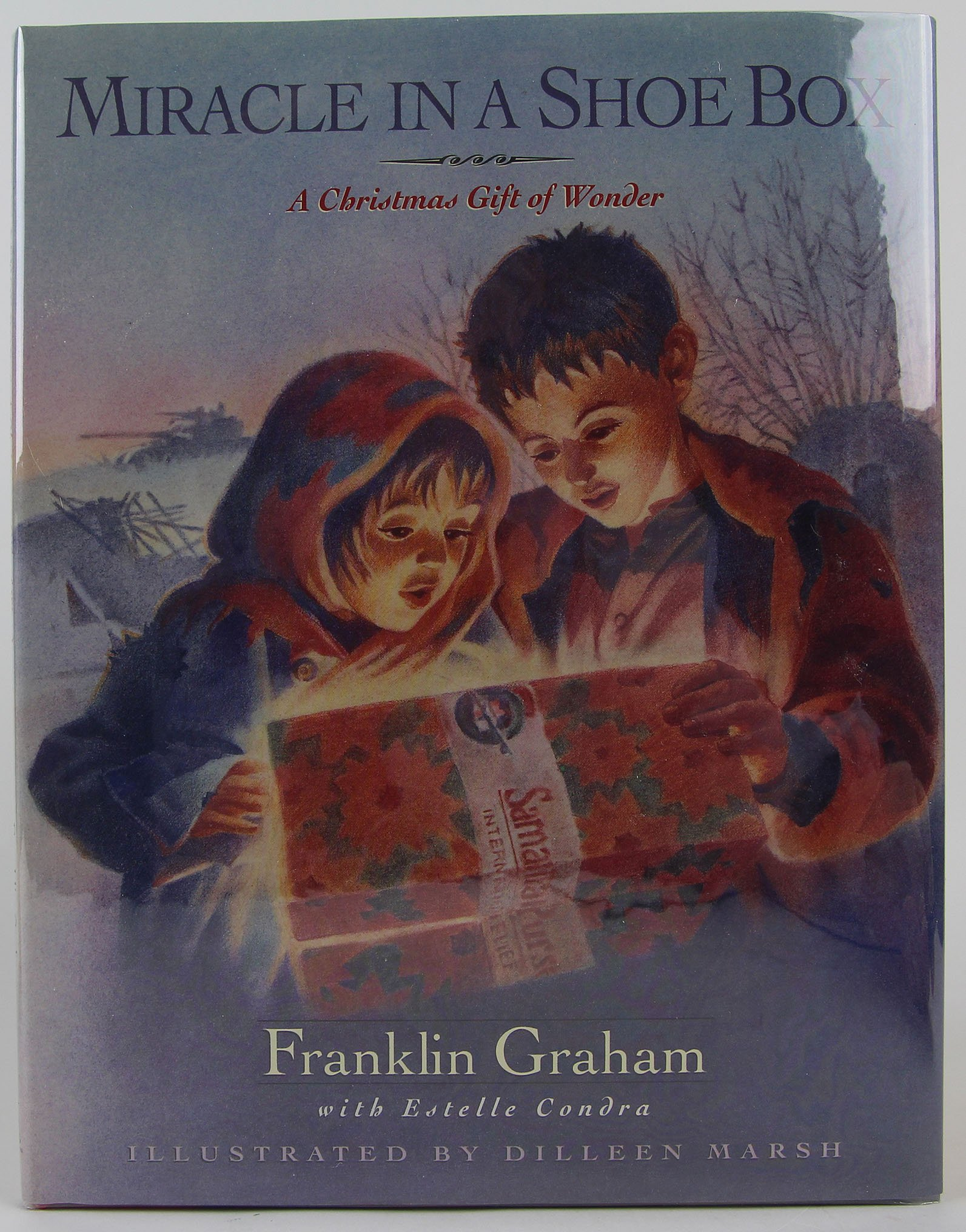 Miracle in a Shoe Box: A Christmas Gift of Wonder