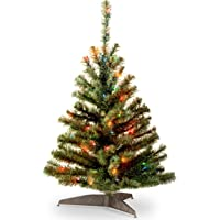 National Tree 3 Foot Kincaid Spruce Tree with 100 Multicolor Lights (KCDR-30RLO-1)