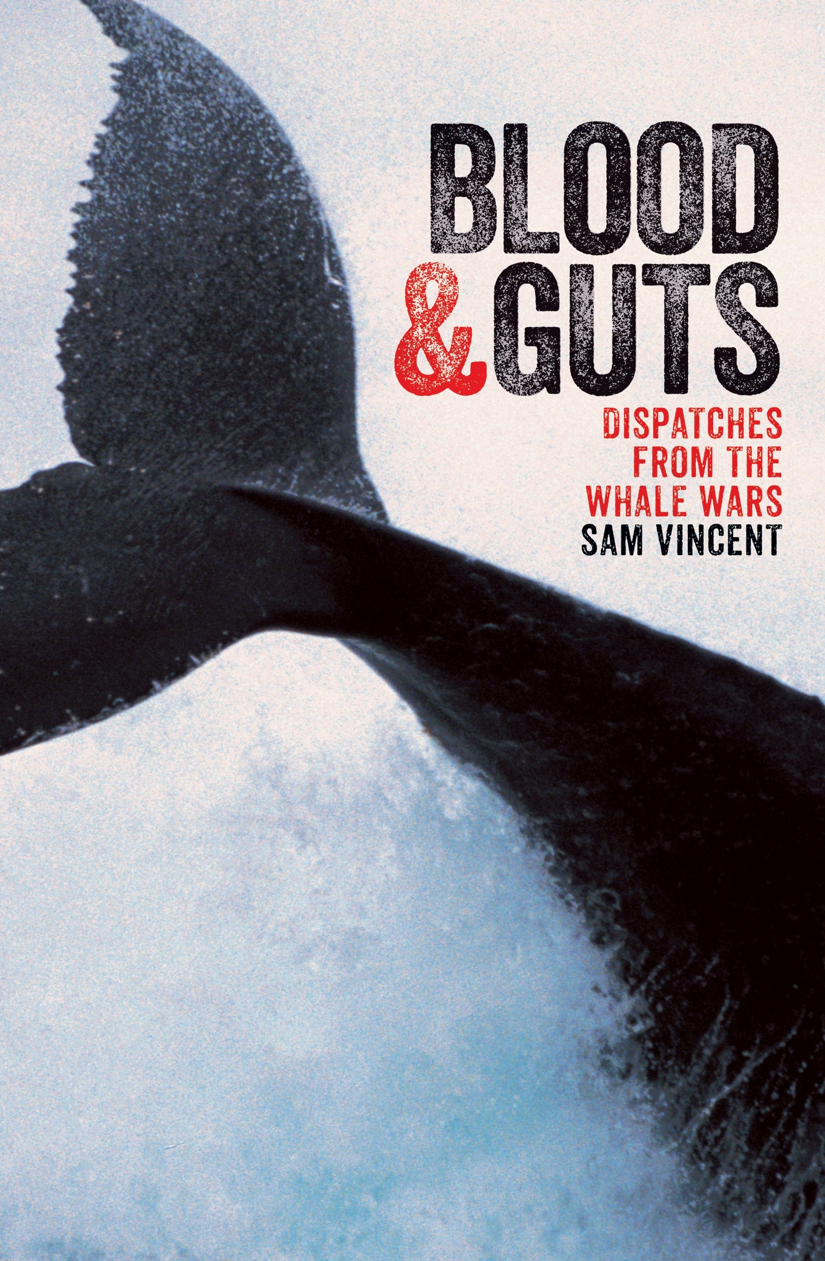 Read Online Blood and Guts: Dispatches from the Whale Wars pdf