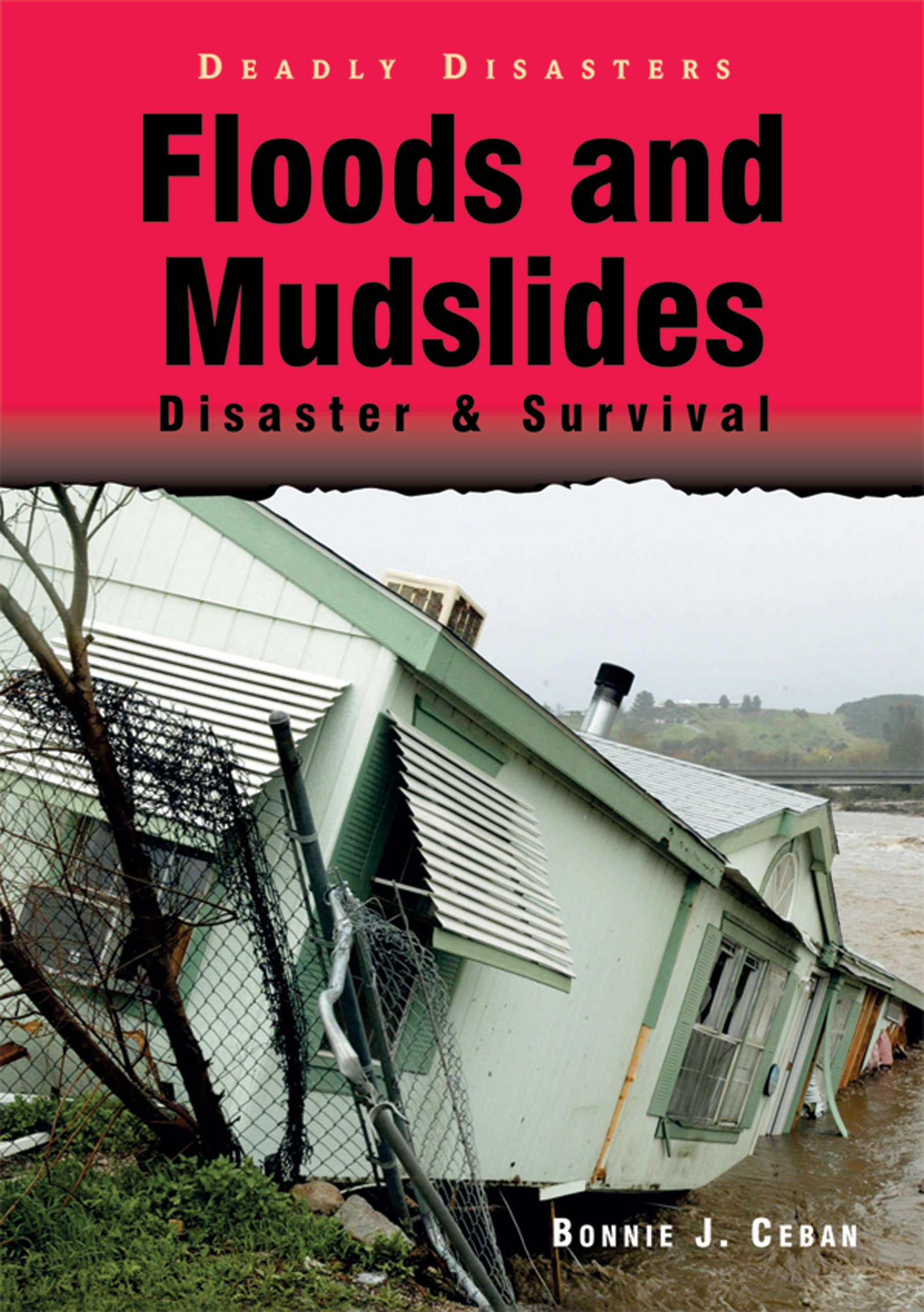 Floods and Mudslides: Disaster & Survival (Deadly Disasters) PDF