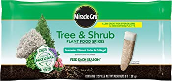 12-Pk Miracle-Gro Tree & Shrub Fertilizer Spikes