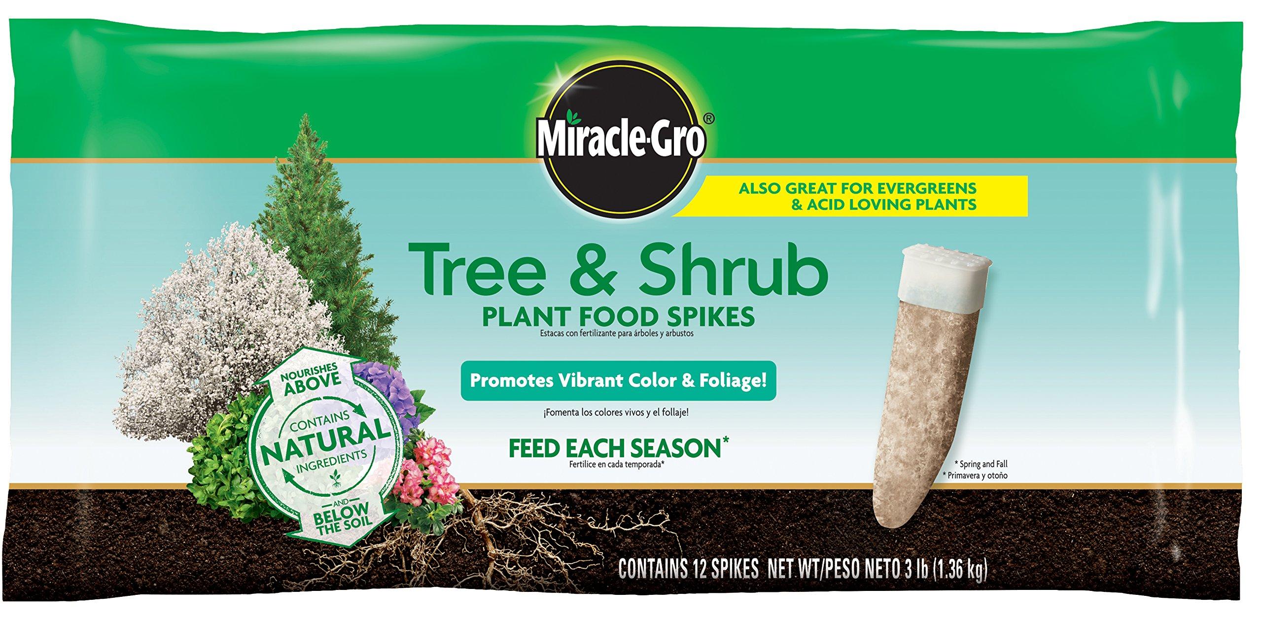 Miracle-Gro Tree & Shrub Fertilizer Spikes - 12 PK