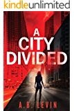 A City Divided (A Naomi Archer and Detective McCauley Series Book 1)