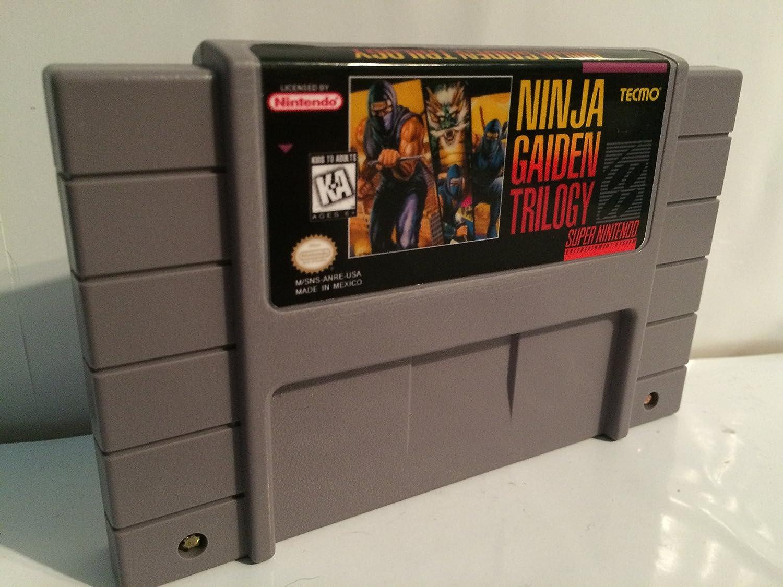 Amazon.com: Ninja Gaiden Trilogy: Video Games