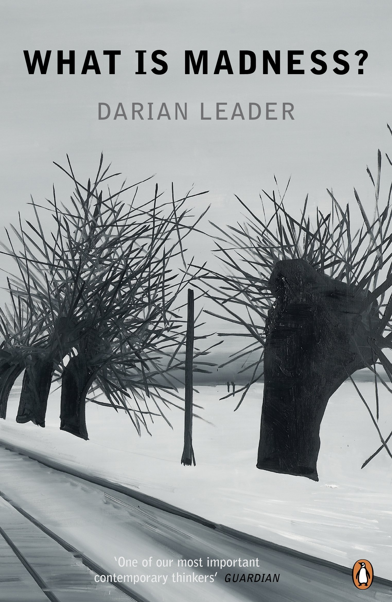 What is Madness?: Amazon.es: Darian Leader: Libros en idiomas extranjeros