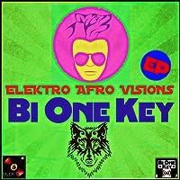 Elektro Afro Vision