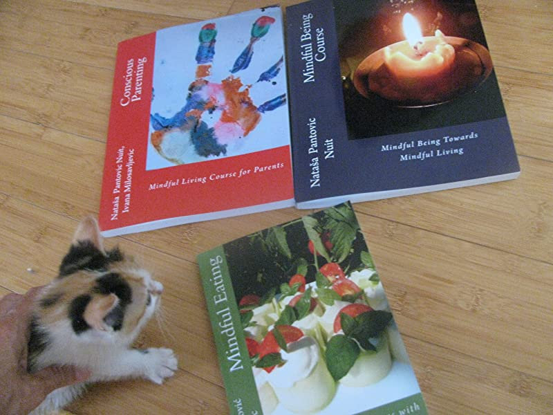 Mindfulness Books PrintedČ Mindful Being, Conscious Parenting, Mindful Eating
