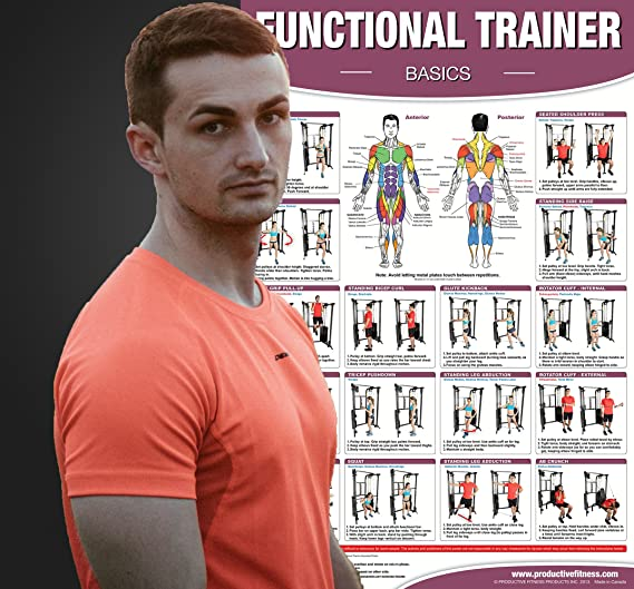 Amazon com : Functional Institutional / Home Gym Poster SET