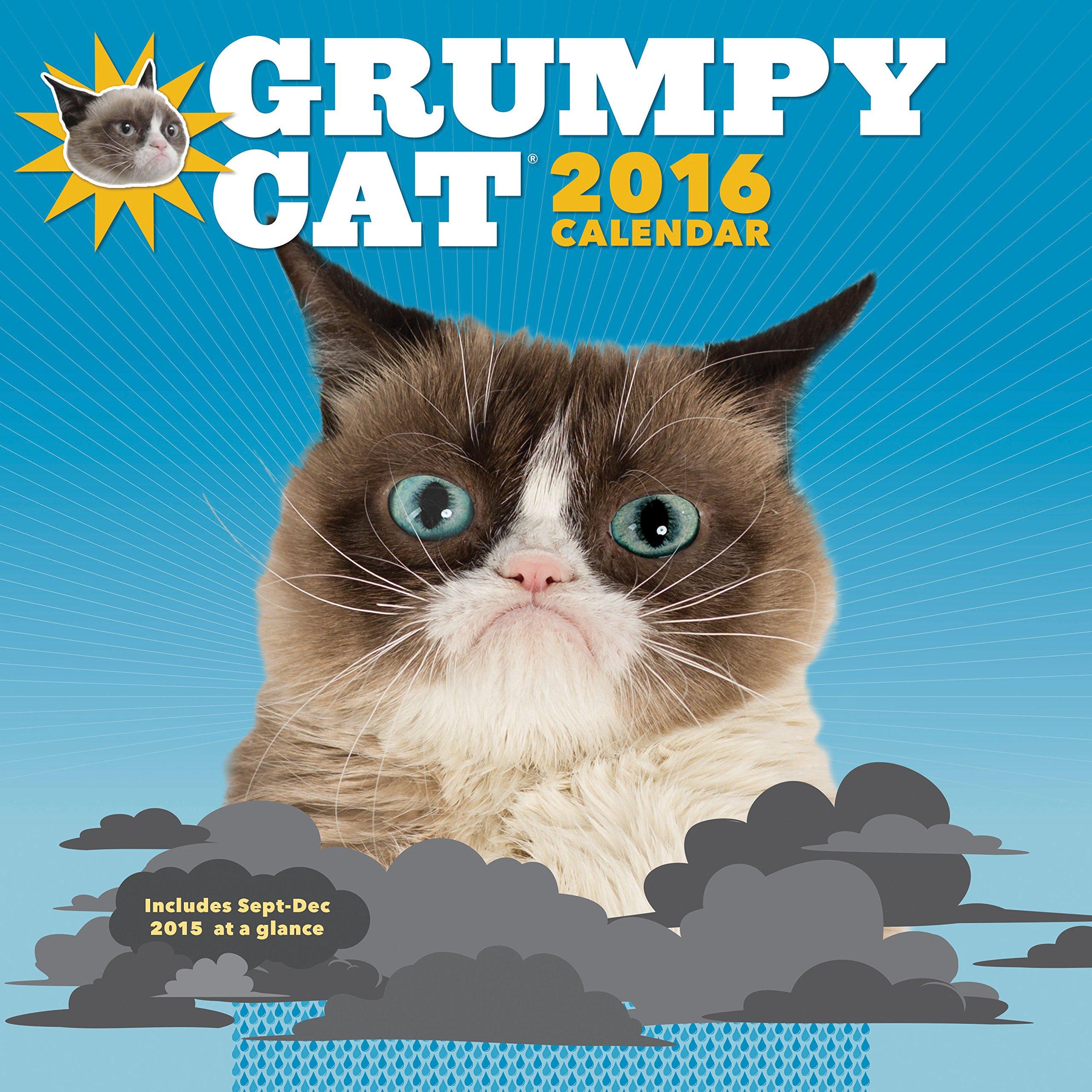 Grumpy Cat 2016 Wall Calendar product image