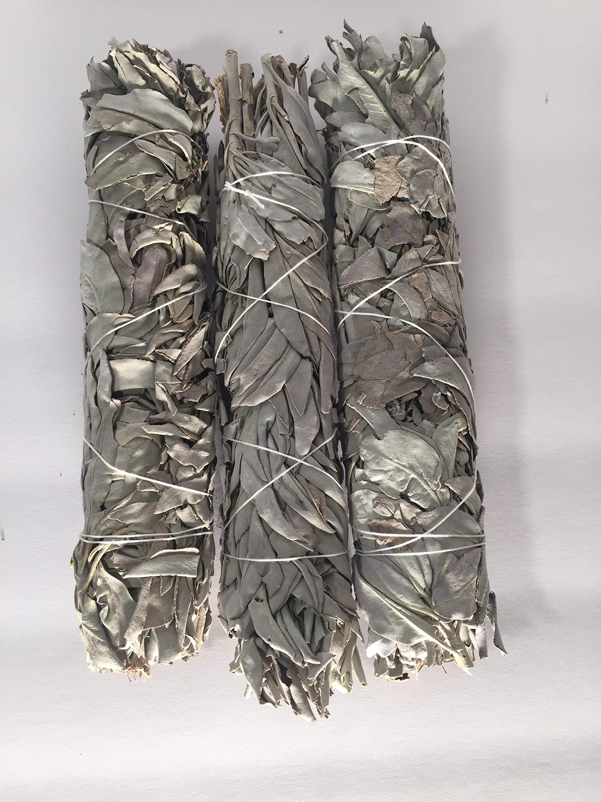 White Sage Extra Large Bundle Smudge Incense 9'' (12 pcs) by wincense (Image #3)