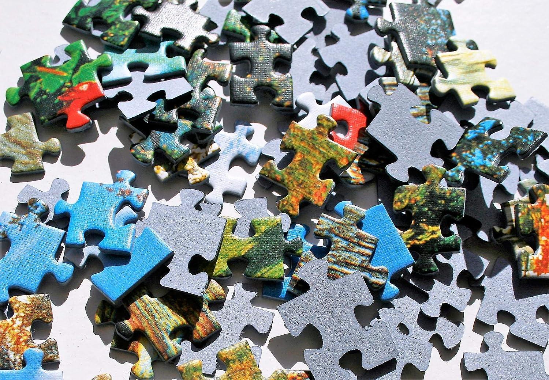 Multicolor Cruise Trefl 1000 Piece Jigsaw Puzzle