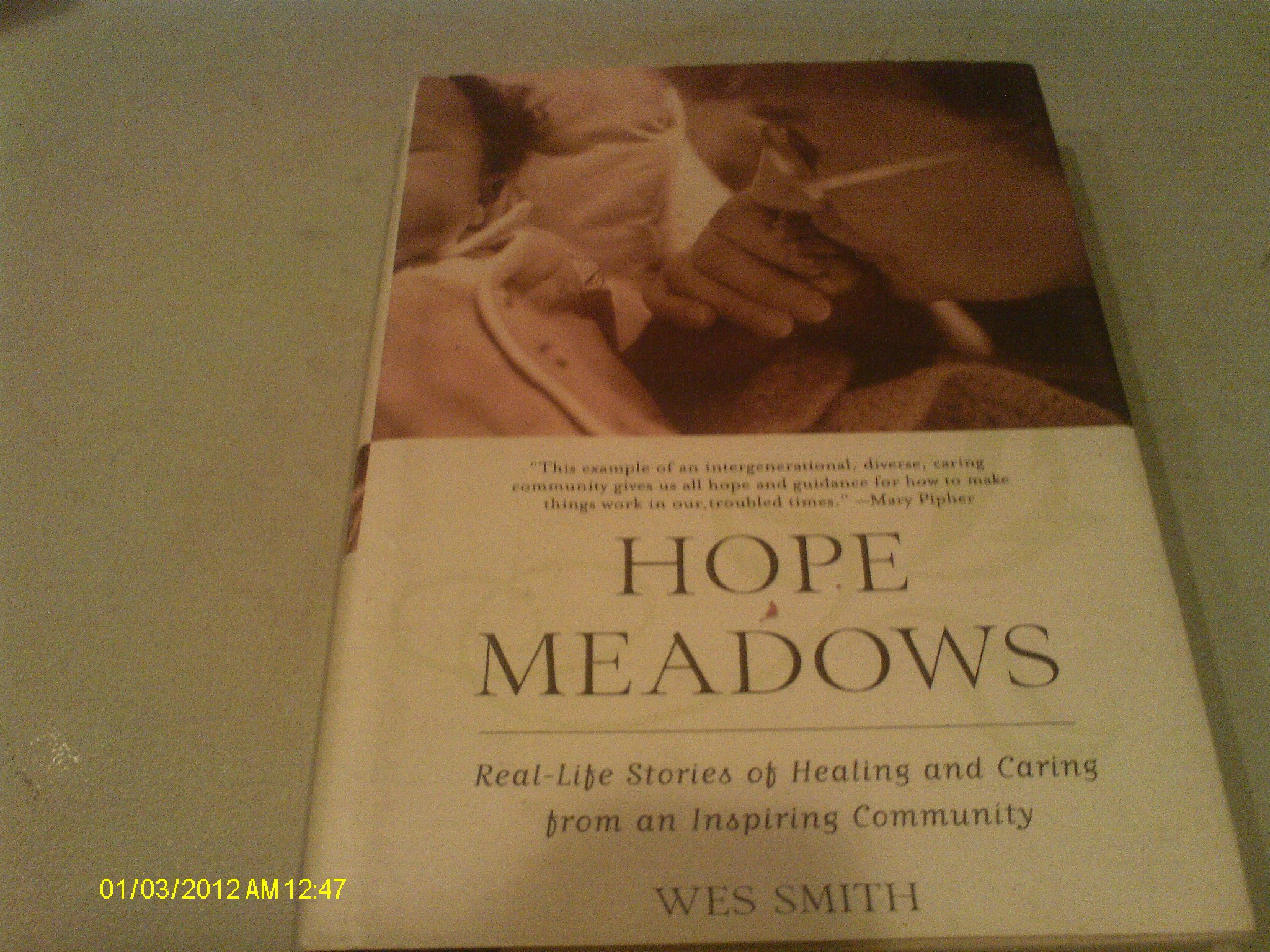 Hope meadows real life stories of healing and caring from an hope meadows real life stories of healing and caring from an inspiring community wes smith 9780739417416 amazon books fandeluxe Epub